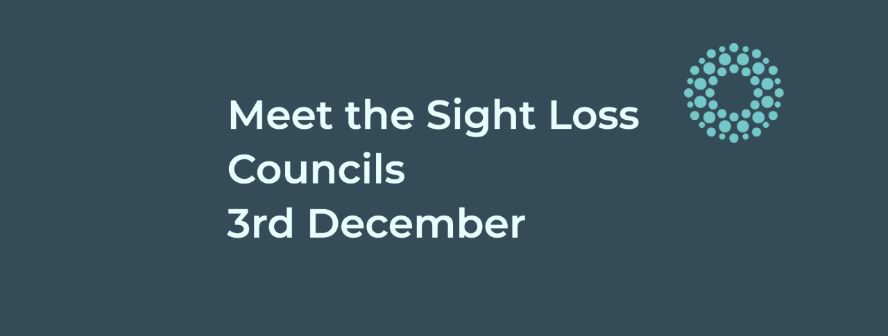 Meet the Sight Loss Councils graphic